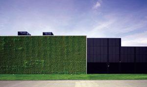 دیوار و بام سبز مرکز دادهٔ سیتی